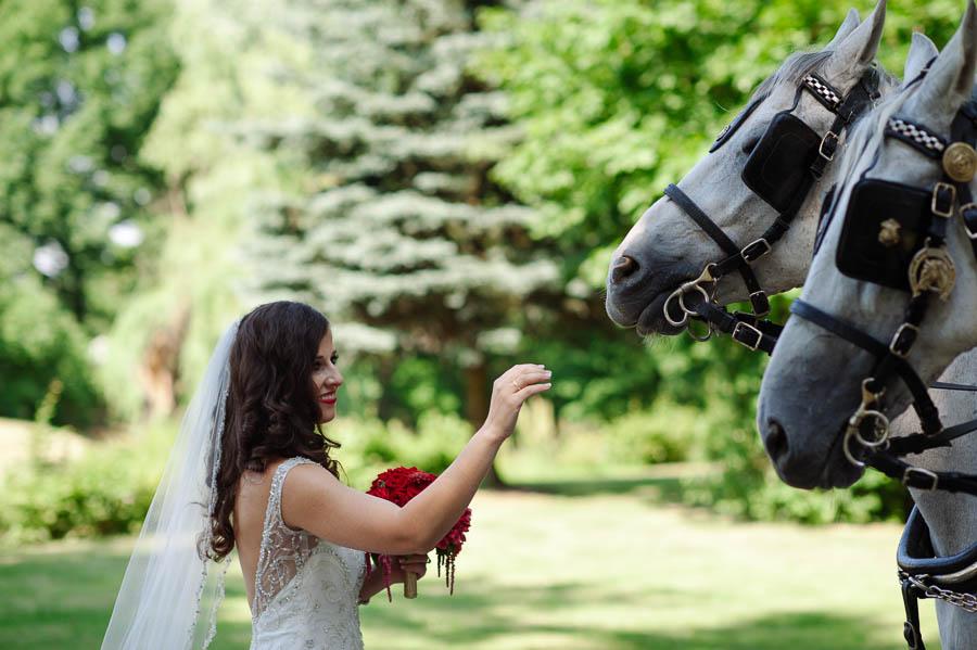 panna młoda z koniem