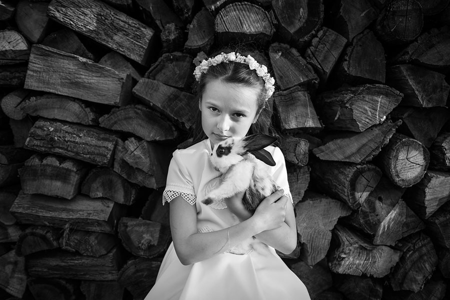 sesja komunijna królik