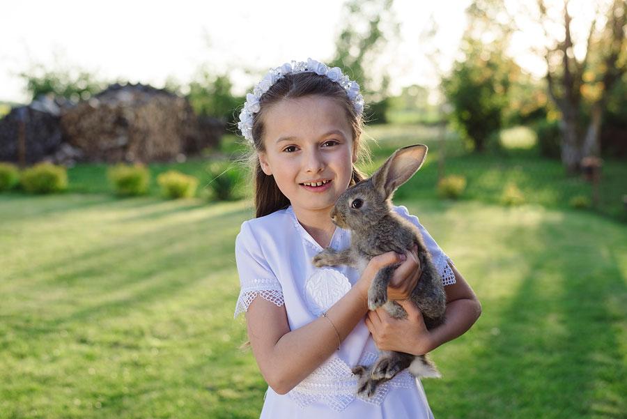 plener komunijny królik